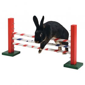 Kerbl - Obstacle Agility pour Rongeurs