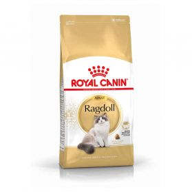 Royal Canin - Croquettes Ragdoll pour Chat Adulte - 2Kg