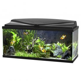 Ciano - Aquarium 80 LED - Noir