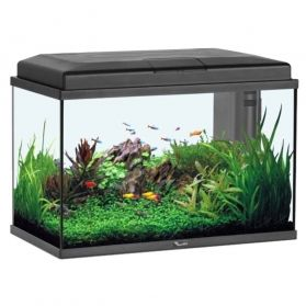 Aquatlantis - Aquarium Aqua Start 55 LED - Noir