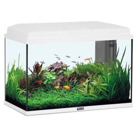 Aquatlantis - Aquarium Aqua Start 55 LED - Blanc