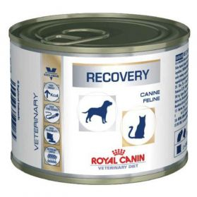 Royal Canin - Boîte Veterinary Diet Recovery pour Chien et Chat - 195g