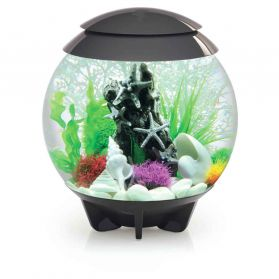 Oase - Aquarium BiOrb Halo LED de 30L - Gris
