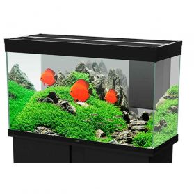 Ciano - Aquarium Emotions Nature Pro 100 - Noir