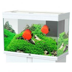 Ciano - Aquarium Emotions Nature Pro 80 - Blanc