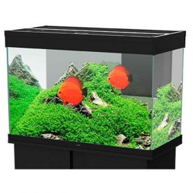 Ciano - Aquarium Emotions Nature Pro 80 - Noir
