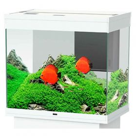 Ciano - Aquarium Emotions Nature Pro 60 - Blanc