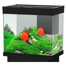 Ciano - Aquarium Emotions Nature Pro 60 - Noir
