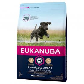 Eukanuba - Croquettes Developing JUNIOR Large Poulet pour Chien - 3Kg