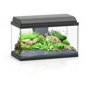 Aquatlantis - Aquarium Aquadream 60 de 52L avec Éclairage LED - Noir
