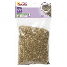 Animalis - Herbe à Chat Catnip 100% Naturelle pour Chat - 30g