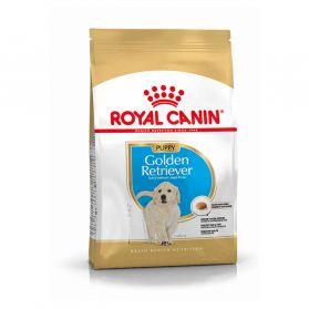 Royal Canin - Croquettes Golden Retriever Junior pour Chiot - 3Kg