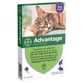 Bayer - Pipettes Antiparasitaires Advantage 80 pour Chat/Lapin - 4x0,8ml