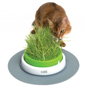 Cat It - Jardin d'Herbe à Chat Senses 2.0
