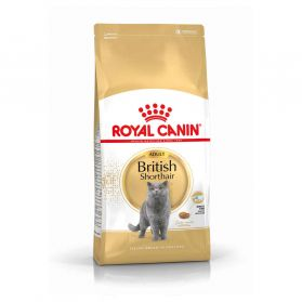Royal Canin - Croquettes British Shorthair pour Chat Adulte - 2Kg