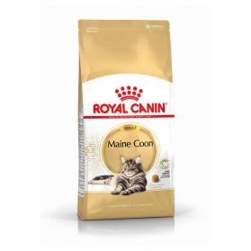 Royal Canin - Croquettes Maine Coon pour Chat Adulte - 4Kg