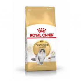 Royal Canin - Croquettes Norwegian Forest pour Chat Adulte - 2Kg