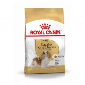 Royal Canin - Croquettes Cavalier King Charles pour Chien Adulte