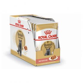 Royal Canin - Sachets British Shorthair en Sauce pour Chat - 12x85g