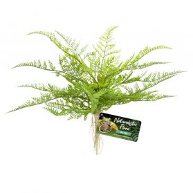 Zoomed - Plante Artificielle Lace Fern pour Terrarium