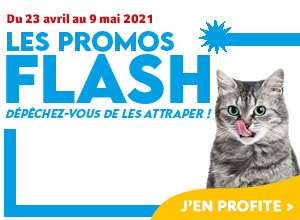 Les promos flash